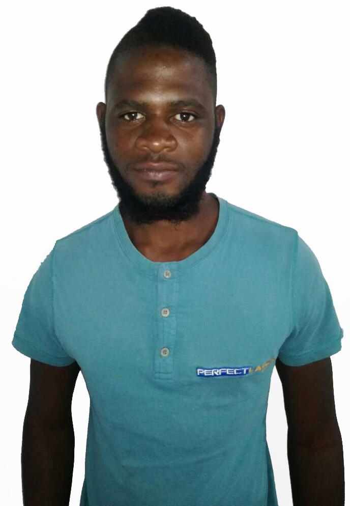 Ronald Chibi